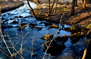 Trout Creek in St. Paul